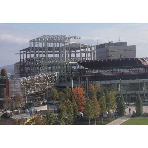 Structura metalica Palas Iasi